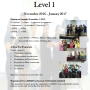 level-1-2016-november-to-2017-january